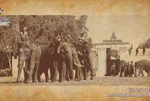 งานช้างสุรินทร์ Surin Elephant Round Up Surin Festival.