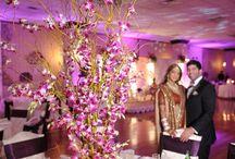 Wedding Receptions / Wedding Receptions