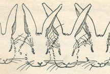 rabbits / by Jen Hollis