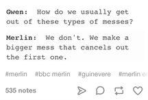 Fan Merlin