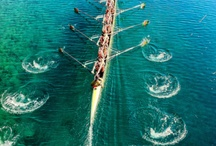 Rowing / by Tania Marriott