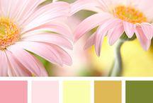 Ihanat värit