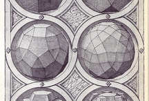 Shapes | polygon . polyhedron