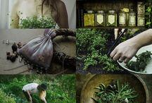 Herbal & Potions