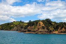 Kiwi Adventures / by Brandy Gutkowski