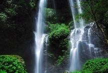 Naturaleza y agua