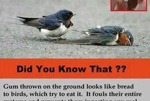 Did You know....