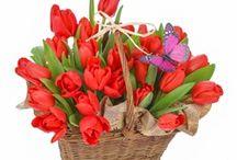 Florarie online Bucuresti / Florarie online Bucuresti - blog - primeste sugestiile clientilor si ofera consultanta gratuit in privinta alegerii buchetului de flori ales.