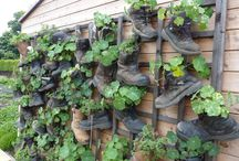 Fun Garden Ideas / Add a little humour and quirkiness into your garden with some of these ideas.