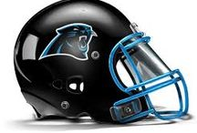 Allen Tate and Carolina Panthers 2014 / Professional Football