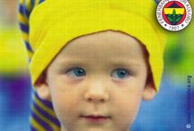 sarı-lacivert