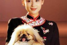 Qi Pao and Chinese woman