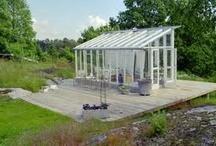 Dream of a greenhouse