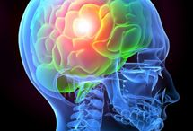 Traumatic Brain Injury and Concussions / Traumatic Brain Injury (TBI) and concussions are a common occurrence in significant car and motorcycle accidents.  On this board we provide a number of articles that discuss brain injuries, terminology related to the brain and legal issues concerning the litigation of closed head injury claims.