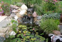bassins d'eau