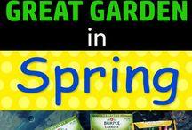 February gardening