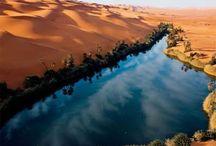 Deserts & Oasis - Desertos e Oásis / by anabela carvalho