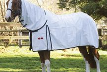 Horse Covers / by Anna Hynes