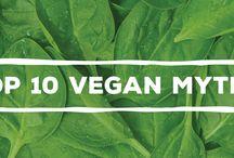 Vegan / Vegetarian Info