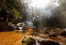 Cachoeiras / Lindas cachoeiras próximas à Brasília! Para ver dicas, fotos e mais informações acesse: metropoles.com #cachoeiras #paraíso #natureza #água #belezasnaturais #turismodf #turismopelanatureza