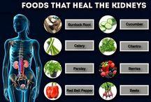 food that heal the kidneys