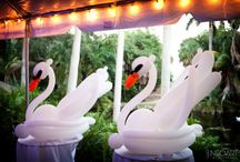 wedding swans