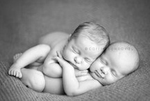 Newborn Photography / by Angela Tarr