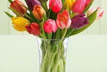 Flowers / by Linda Swain-Sommers