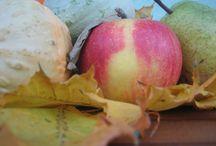 Zdravo a chutne / chudnutie, eat, gesunde essen, Metabolic Balance