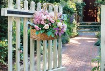 Garden ideas / by Lisa Roesler