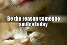 Keep the smile, leave the tension. / by Sadhana Nasurdin