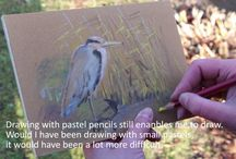 Videos / Videos on how to draw with pastels made by Loes Botman.