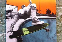 quadros de skates