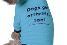 Animal Arthritis