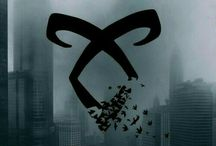 the shadowhunters ❤