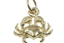 Astrology Charms Online / https://www.chain-me-up.com.au/astrology-charms-for-bracelets-silver-gold.asp