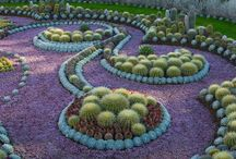 Succulents ❤ Gardening Design / a collection of nice succulent garden design / by Emma Arenas