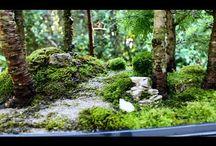 Lesíky