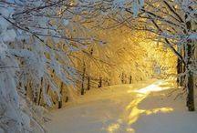 Téli világ