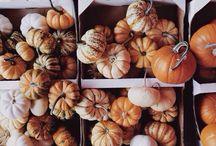 // autumn //