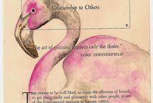 Flamingos inspiration