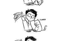 Interrogating The Cat