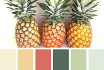 Color Combos / Color Combinations for your home!