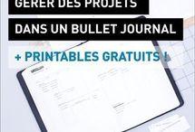 Organisation | Projets
