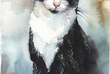 Favoritbilder katt