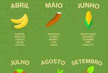 frutas da época