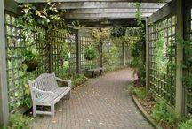 Garden and backyard ideas / by Maria Rivera