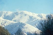 Tennessee Snow Pics / This cold winter has us looking for beautiful pictures of TN snow to post.