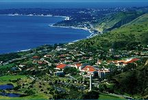 Pepperdine / Pepperdine University is a prestigious learning institution. It is also where I earned by college education. Discover more about the history of the school now!