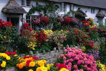 English Gardens / English gardens are the best in the world, in my opinion anyway, here are some that are so beautiful.